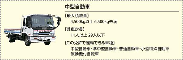 detail_cyugata