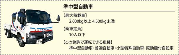 detail_jyuncyugata